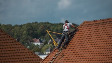 Photo of How Can a Roofer in Toronto Help Your Roof?